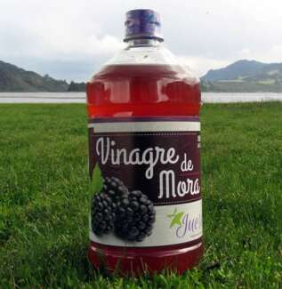 Vinagre de Mora