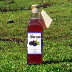 Vinagre de Mora Gourmet